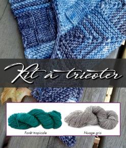 Kit à tricoter   Patron de tricot - Châle Week-End et laines teintes Fôret tropicale et Nuage gris