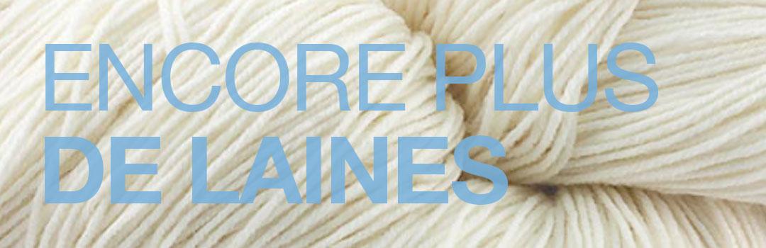 Header page demande de laines à teindre